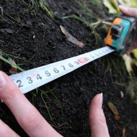Кадастровая стоимость земли сельскохозяйственного назначения: оценка