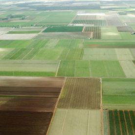 Кадастровая земля: участки кадастрового учета