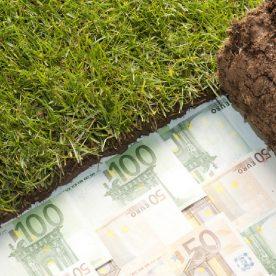 Кадастровая оценка сельскохозяйственных земель: особенности