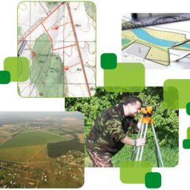 Служба земельного кадастра: какими наделена полномочиями?