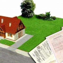 Кадастр и реестр недвижимости: что входит в перечень?
