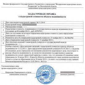 Форма кадастровой выписки: правила заполнения