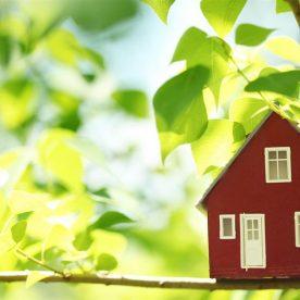 Роснедвижимость: определение понятия