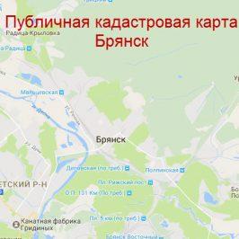 Публичная кадастровая карта Брянск