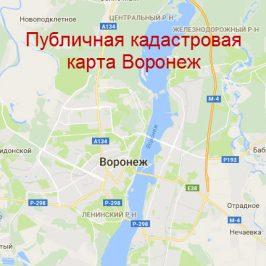 Публичная кадастровая карта Воронеж