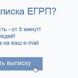 Заказать выписку ЕГРН (ЕГРП) за 5 минут без регистрации