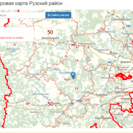 Публичная кадастровая карта Рузский район (Московская область)