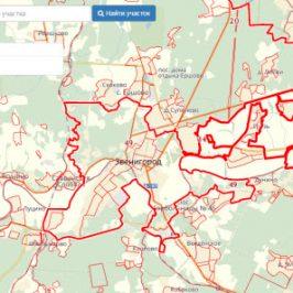 Публичная кадастровая карта города Звенигород