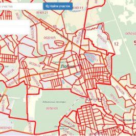 Публичная кадастровая карта города Лобня